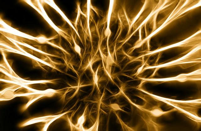 神経のイメージ画像