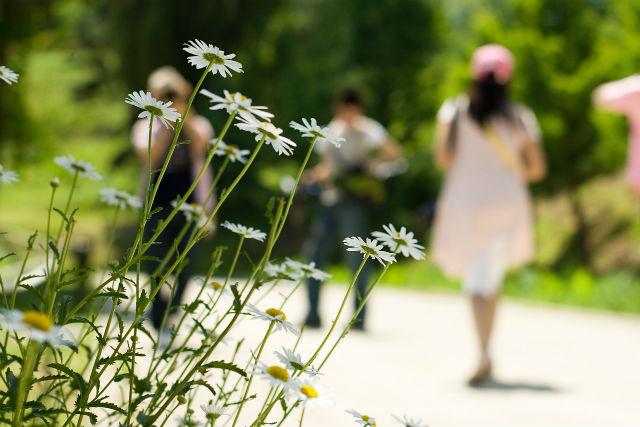 休日散歩する女性