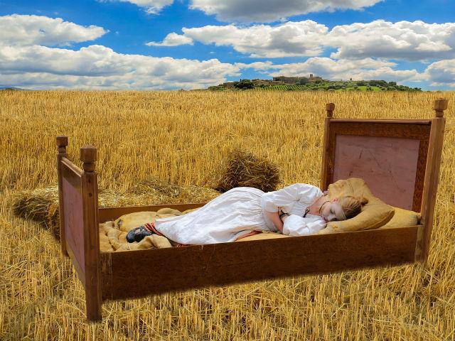 麦畑で眠る女性
