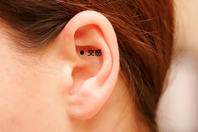 耳のツボ-交感