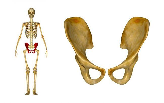 骨盤を締める!寝ながら簡単エクササイズ3選|広がったままは危険な理由