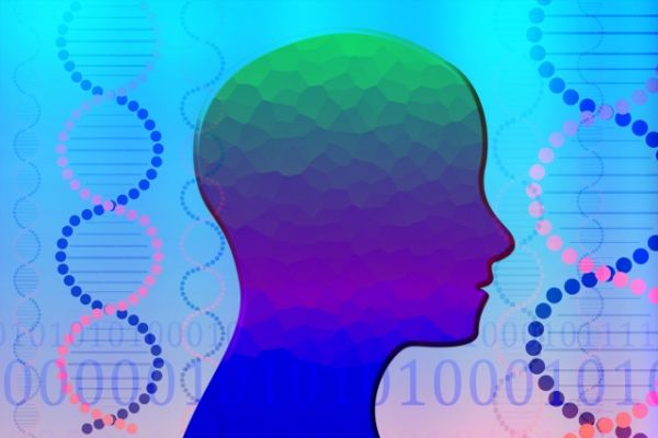 脳内物質のイメージ画像